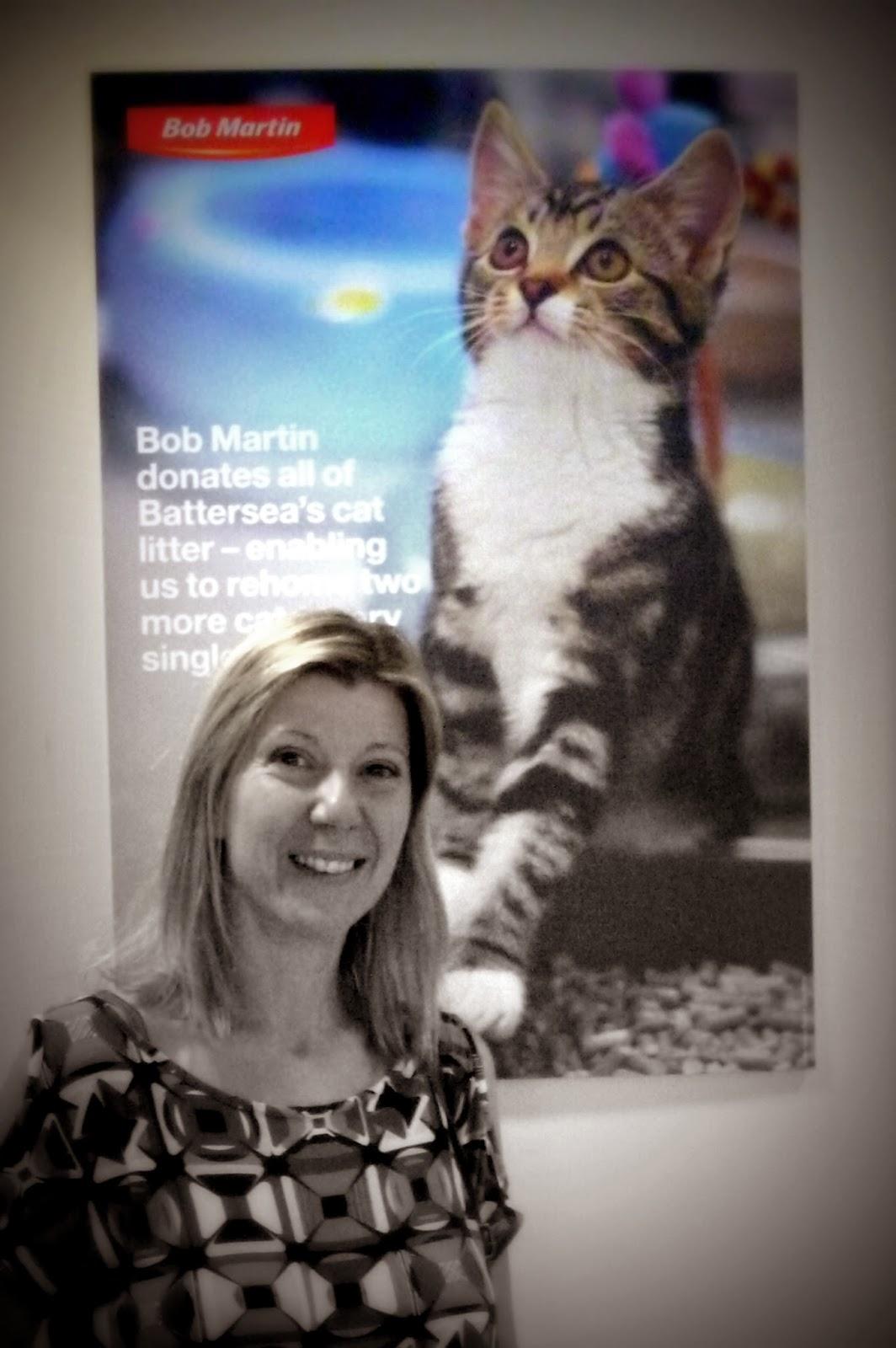 Bob Martin Pink Cat Litter