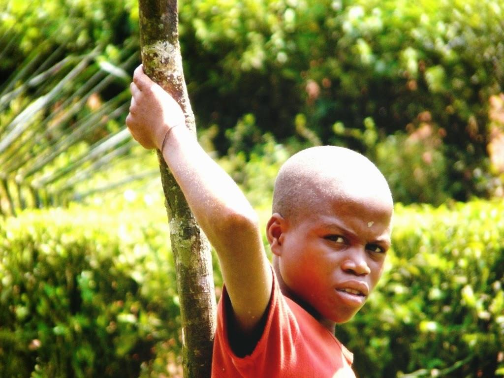 Regard d'enfant dans la forêt