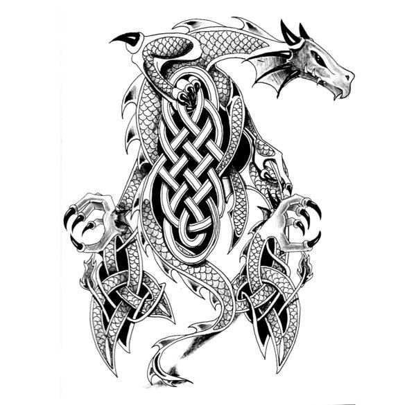 world 39 s most popular tattoo for female celtic dragon tattoo designs. Black Bedroom Furniture Sets. Home Design Ideas