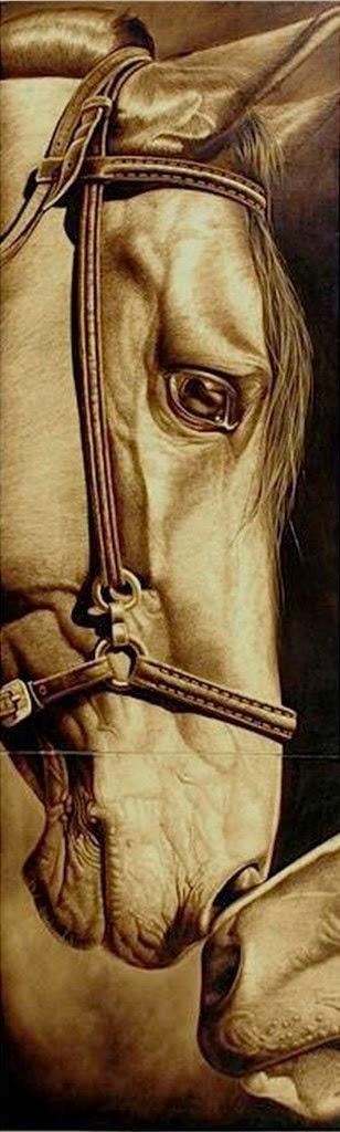 caballos-pintados-con-brea-realismo