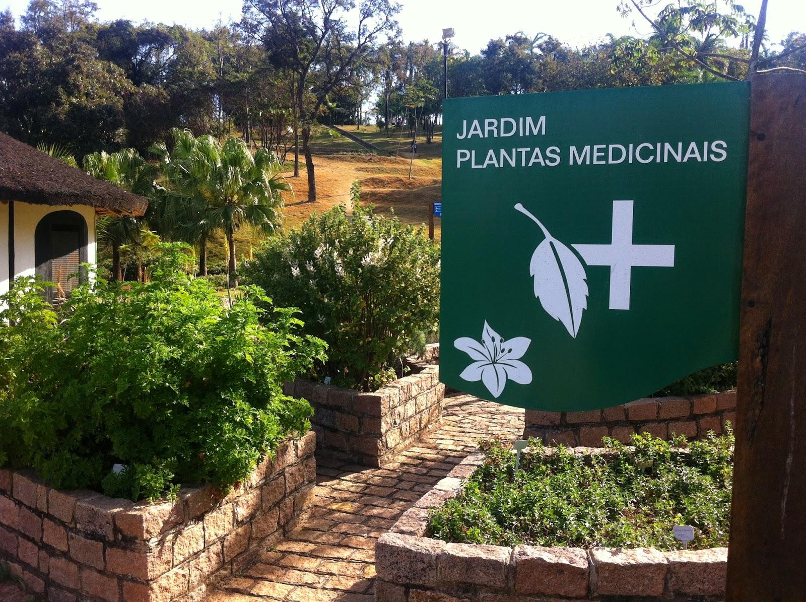 Inclusão: Acessibilidade Cultural.: Jardim Botânico de Jundiaí/ SP #9A7131 1600 1195