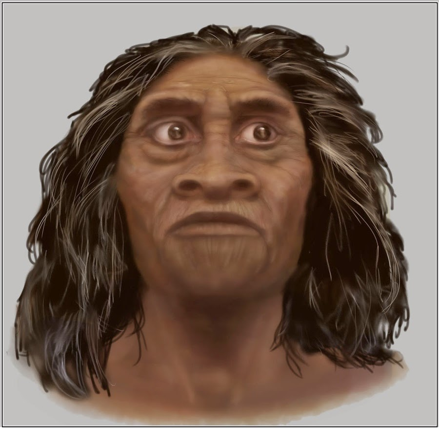 homo sapiens Homo sapiens - bodily structure: as intimated above, the physical definition of h sapiens is bedeviled by a basic divergence of views among paleoanthropologists one school of thought.