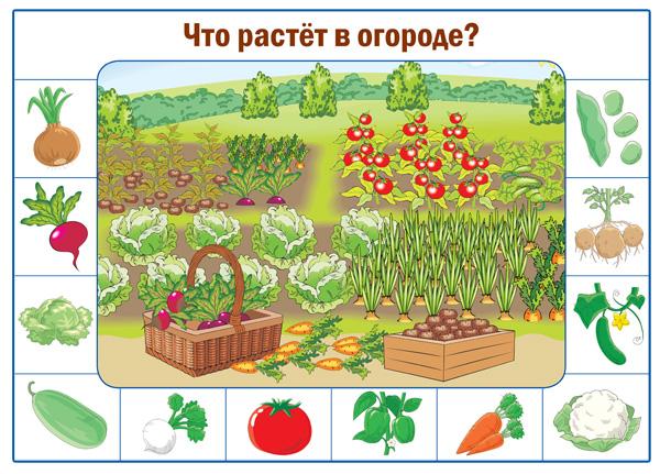 картинки для огорода на окне распечатать