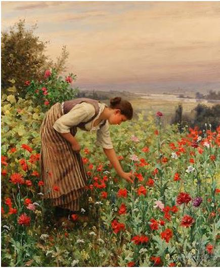 Resultado de imagem para colhendo flores