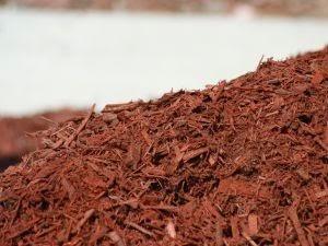 The Basics of Using Mulch