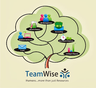 TeamWise- Performance Management