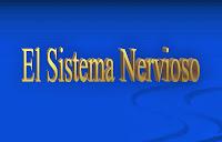 external image sistema-nervioso.jpg