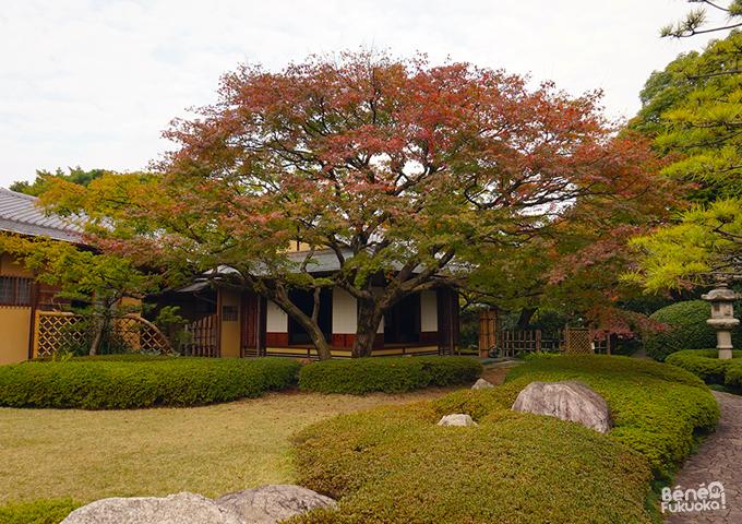 Momoji - Shofuen, Fukuoka
