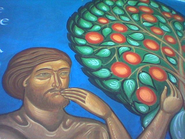 Ls Land Forbidden Fruit