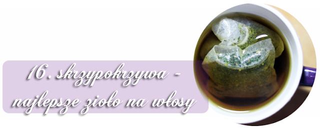 http://www.anwen.pl/2013/12/skrzypokrzywa-najlepsze-zioo-na-wosy.html