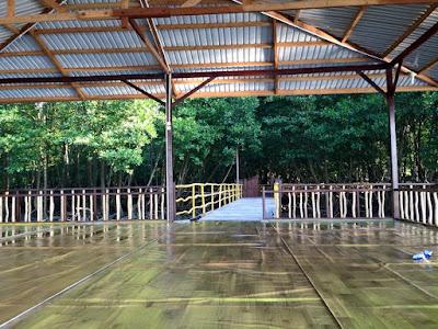 Hutan Mangrove BSD piknikbontangcom