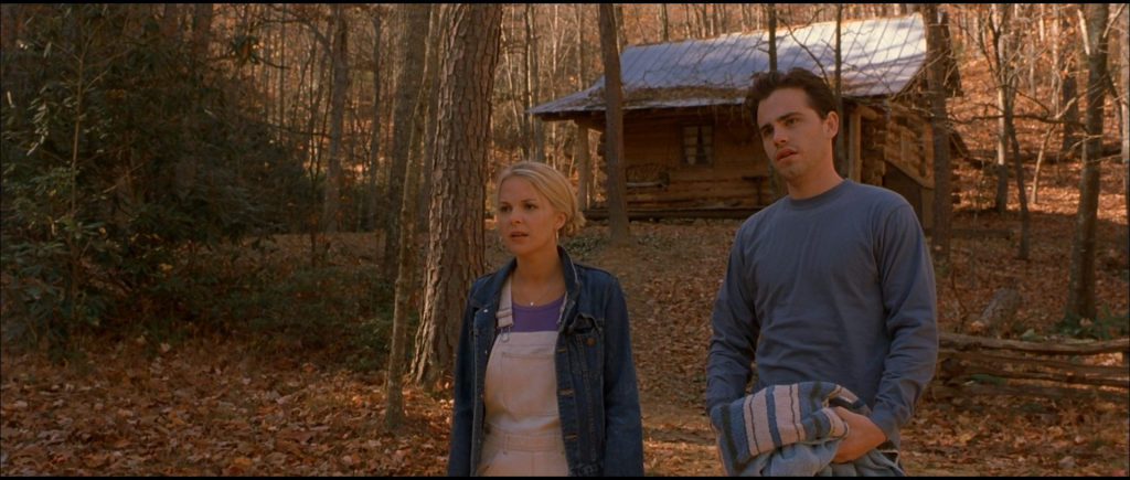 cabin fever movie download 2002