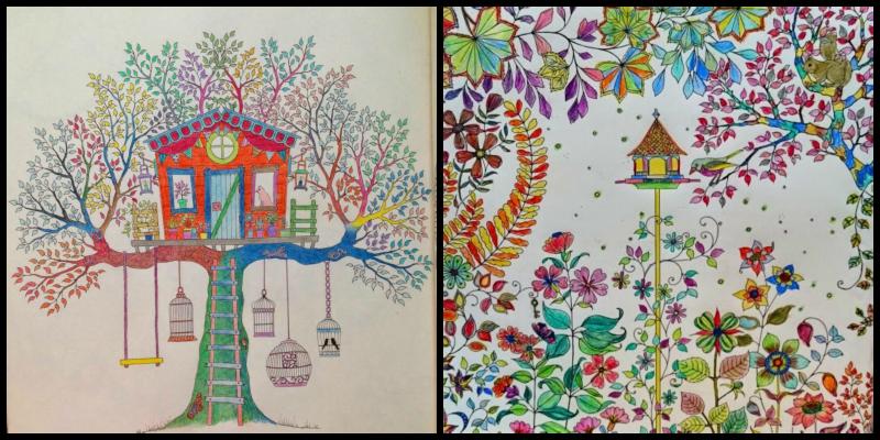 De jardines secretos y bosques libros para colorear for Bazzel el jardin de los secretos