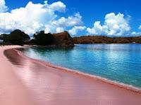 Pantai Unik Berwarna Pink Paling Indah Di Dunia