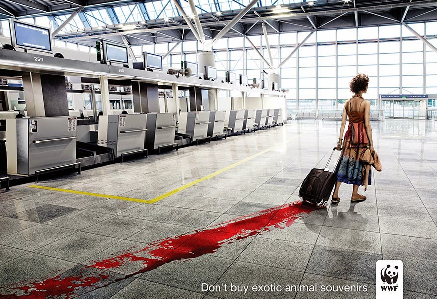 Don't Buy Exotic Animal Souvenirs - 33 Powerful Animal Ad Campaigns That Tell The Uncomfortable Truth