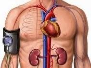 High Blood Pressure