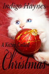 Indigo's Christmas Kitten Story!