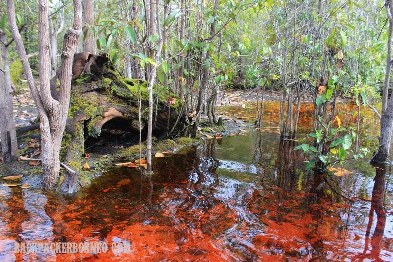 Air yang berwarna merah kehitaman