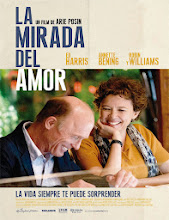 La mirada del amor (The Face of Love) (2013) [Latino]