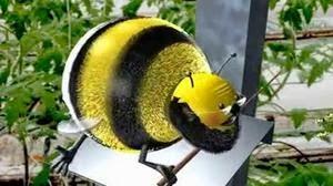 Formation par Koppert sur le stockage des Abeilles de pollinisation