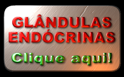 GLNDULAS ENDCRINAS