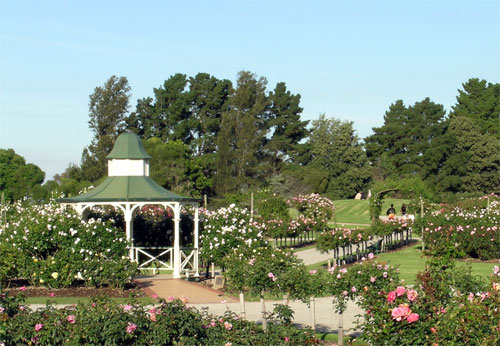 One perfect day outdoor wedding venues public places for Garden pond melbourne