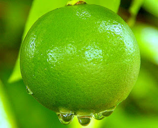 Lime Benefits in Our Body Health