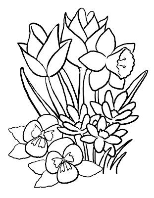 Primavara - planse de colorat