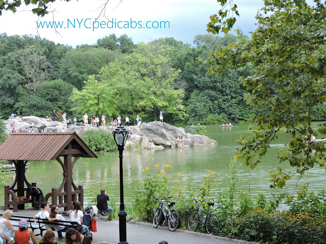 The most popular tours at Central Park in New York City
