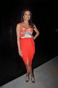 Surveen Chawla latest glamorous photos-thumbnail-3
