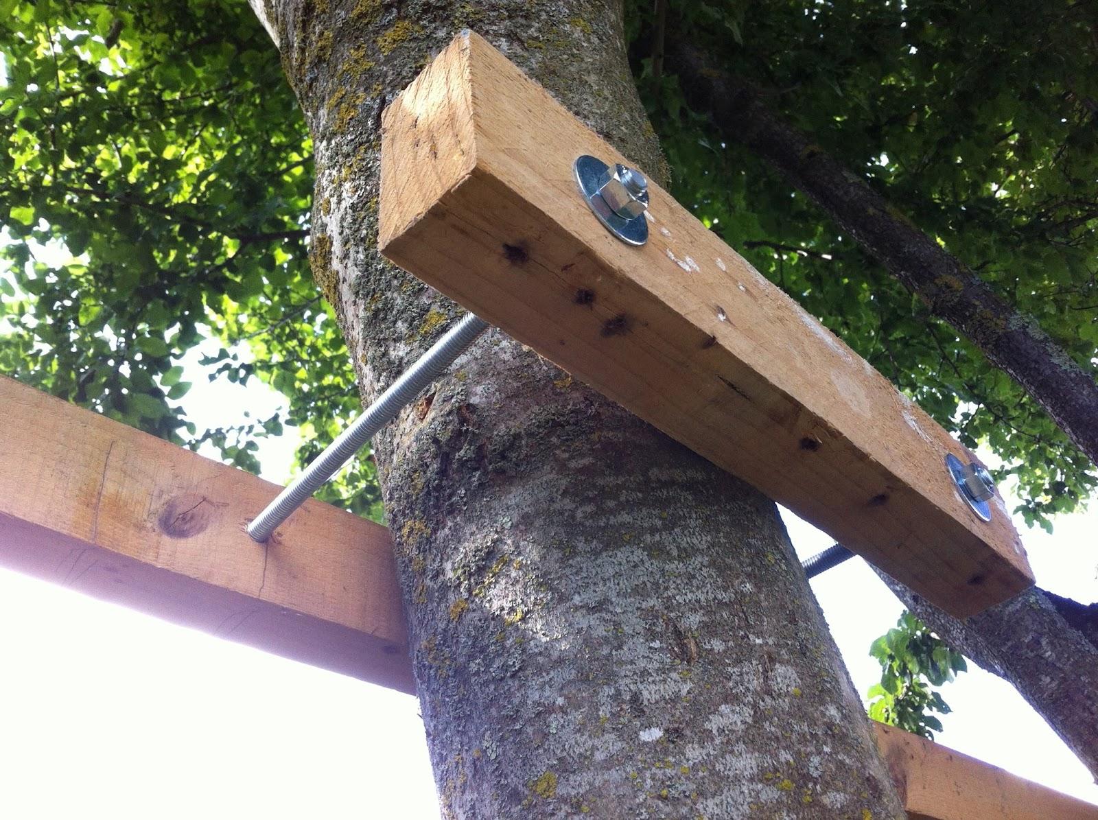 """Fabriquer Une Cabane En Bois Dans Un Arbre : """"terrasse"""" de la cabane est fix? par des ?querres de charpentier"""