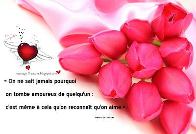 carte-avec-fleurs-citation