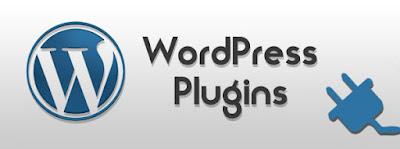 """Dukungan Plugin di Blog Wordpress Untuk Internet Marketing """"Sangat Penting"""""""
