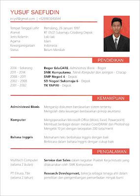 Contoh CV Formal yang Menarik