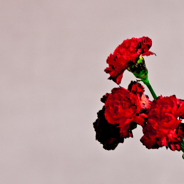 John Legend - All Of Me - traduzione testo video download