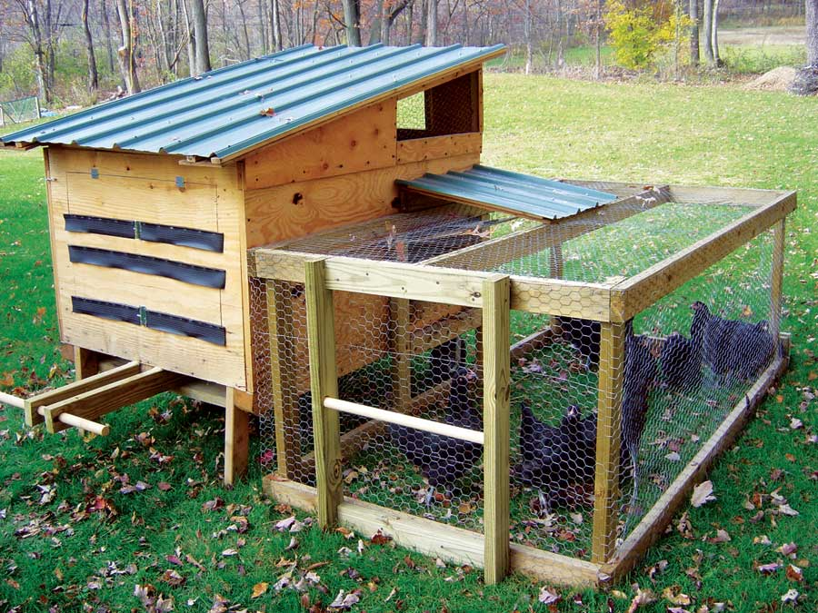 Chicken coop designs a small chicken coop for Chicken coop designs for 3 chickens