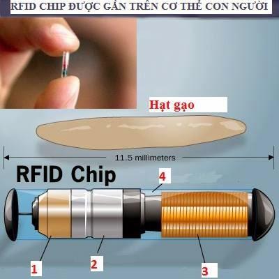 Chip will be cấy ghép vào người khỏe mạnh sớm hơn bạn nghĩ - Tin chấn động
