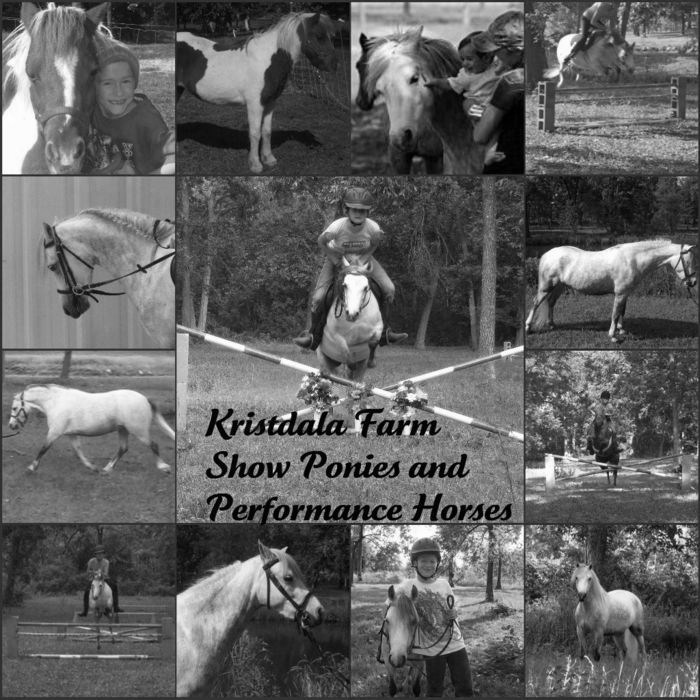 Kristdala Farm