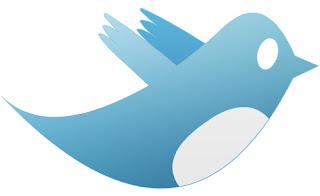 Twitter protezione