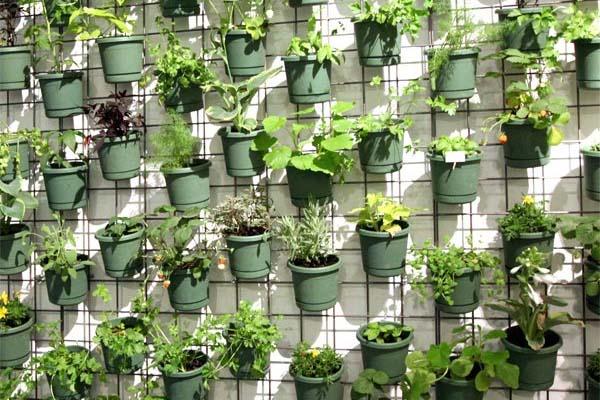 Extremamente New Garden Service: Horta suspensa PJ21
