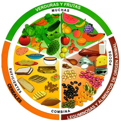 El plato del bien comer | Creativilandia