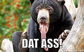 funny bear ass meme