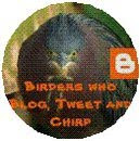 Birders who Blog, Tweet and Chirp