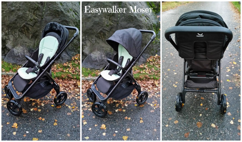 http://easywalker.nl/product/mosey/