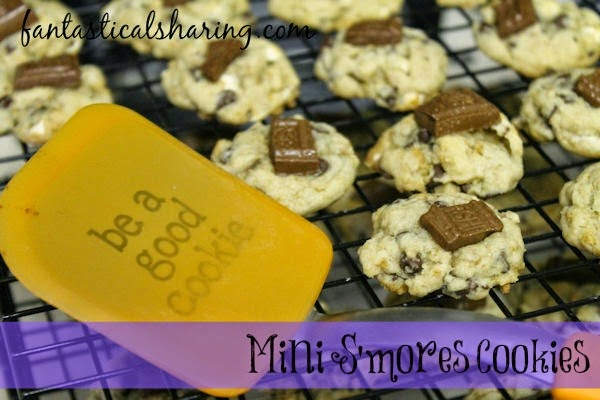 Mini S'mores Cookies | Not only are they super cute, they are also super delicious! Have one or five, I won't judge you! #cookies #smores #recipe
