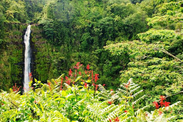 Hawaii, Kona, Akaka Falls
