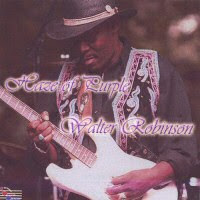 Walter Robinson - Haze Of Purple