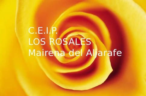 CEIP Los Rosales-Pincha en el enlace