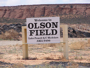 Named in 2008 in honor of Ole Olson