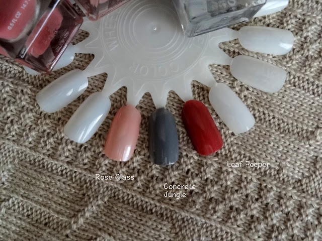 ally Hansen Complete Salon Manicure in Rose Glass, Leaf Peeper and Concrete Jungle  Swatches
